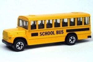 The Big Yellow School Bus